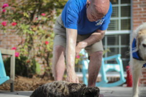 man pets therapy cat