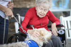 Woodbury patient petting a therapy dog